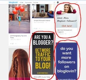 Buying followers on Bloglovin
