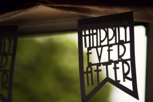 Happily ever after wedding decor. Bunting. Flag