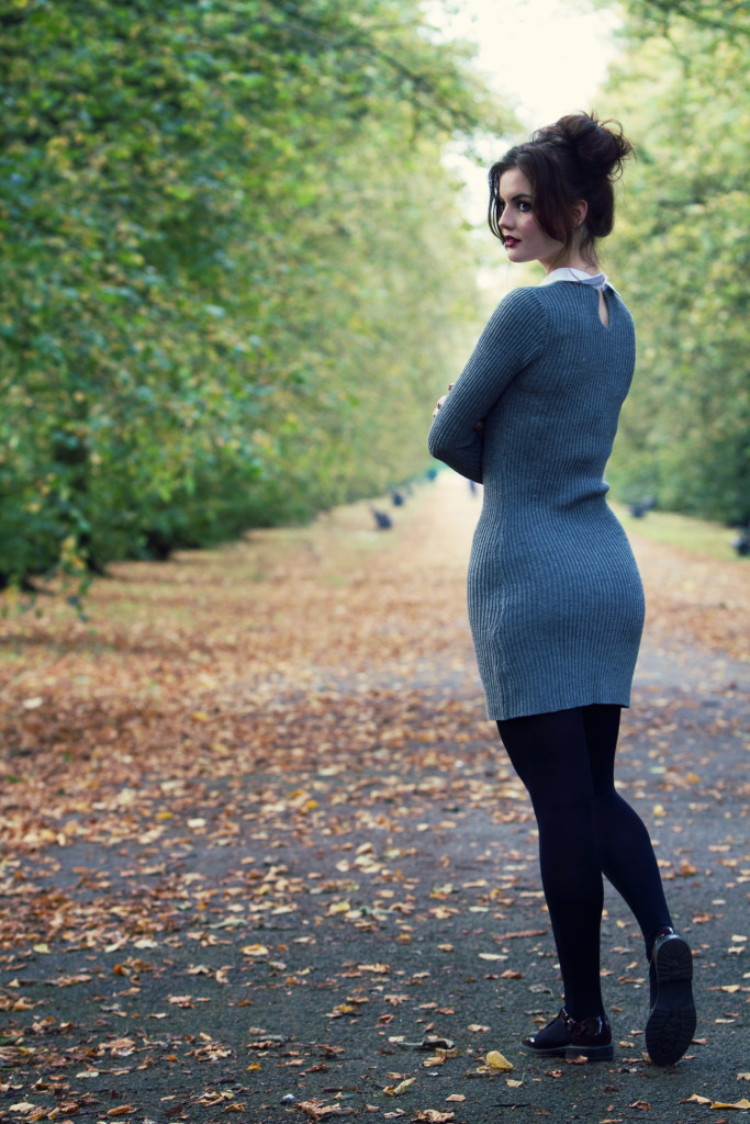 autumn-leaves-in-haslam-park