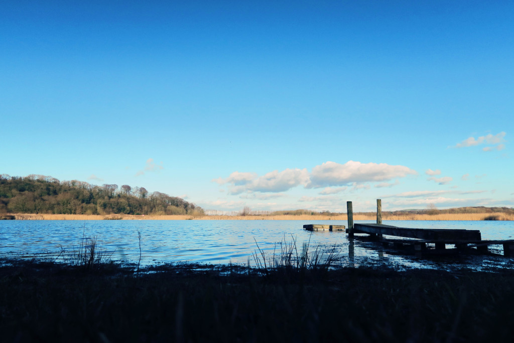 brockholes-nature-reserve-preston