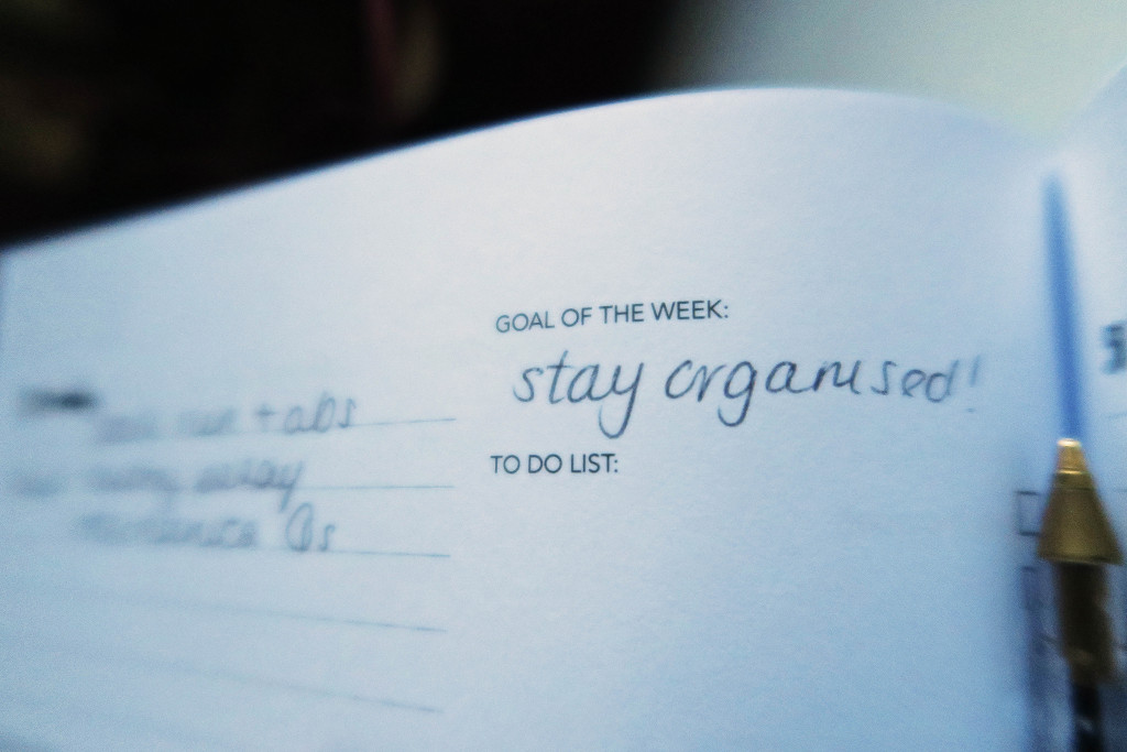 bloggers-journal-organisation-goals