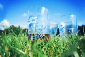 Beer glasses sat on grass at Hopfest Beer Festival. Preston Grasshoppers Rugby Football Club, Preston, Lancashire, England.