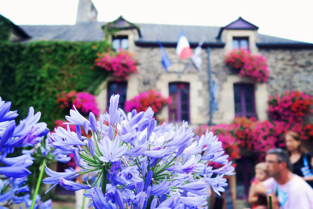 flowers-in-rochefort-en-terre