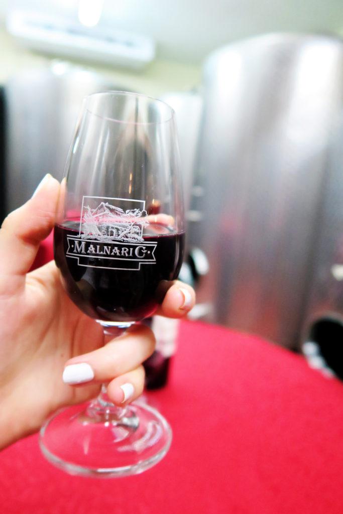 slovenian-wine-tasting