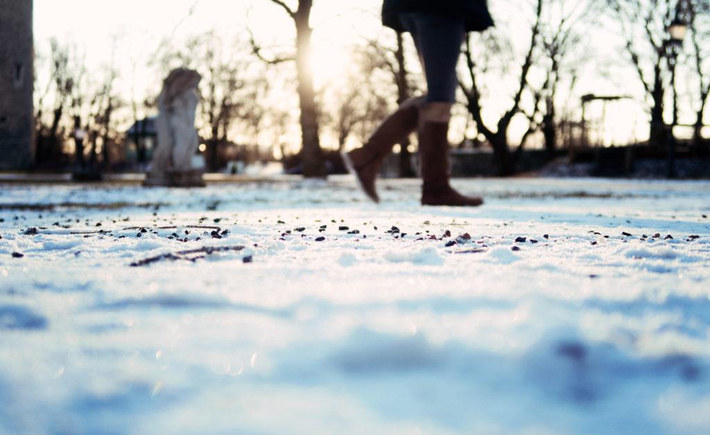 macro-photo-snow