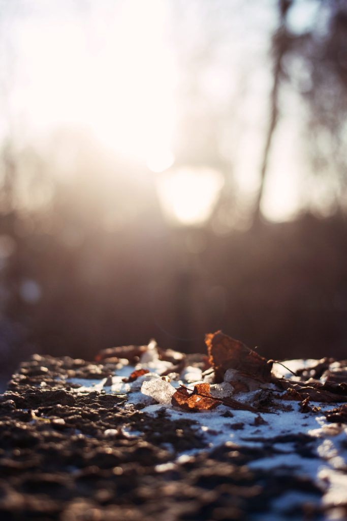 morning-light-glow
