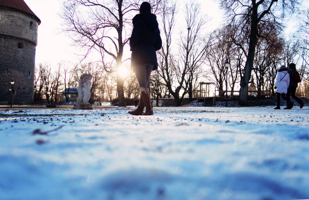snowy-morning-in-tallinn