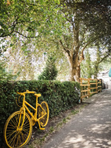 Yellow painted bicycle leaning against hedge Tour de Yorkshire